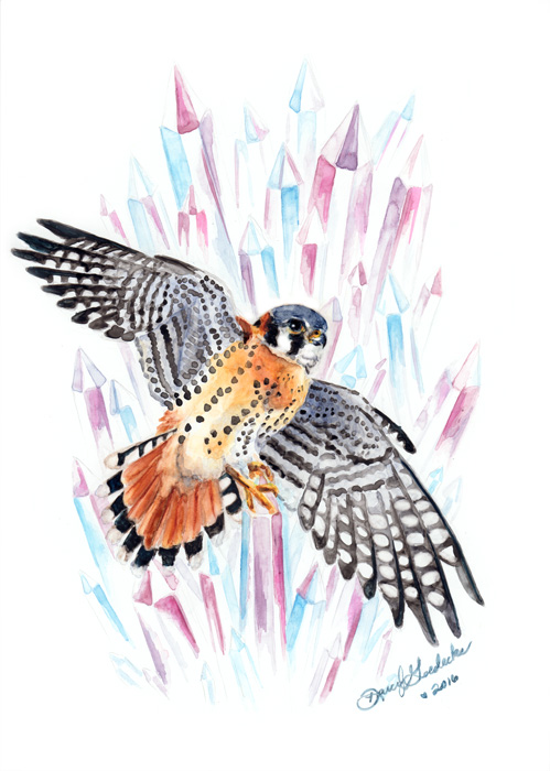 Carrie's Kestrel by Darcy Goedecke