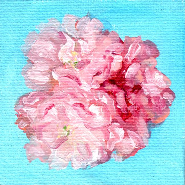 CherryBlossomsWeb