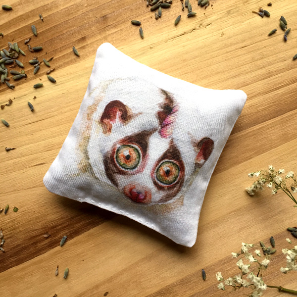 Slow Loris Sachet by Darcy Goedecke