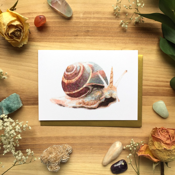 Snailicorn Card by Darcy Goedecke