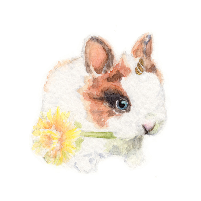 Bunnicorn | Watercolor by Darcy Goedecke