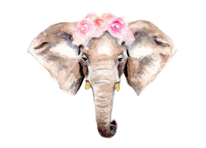 Elephant Ranunculus   Watercolor by Darcy Goedecke