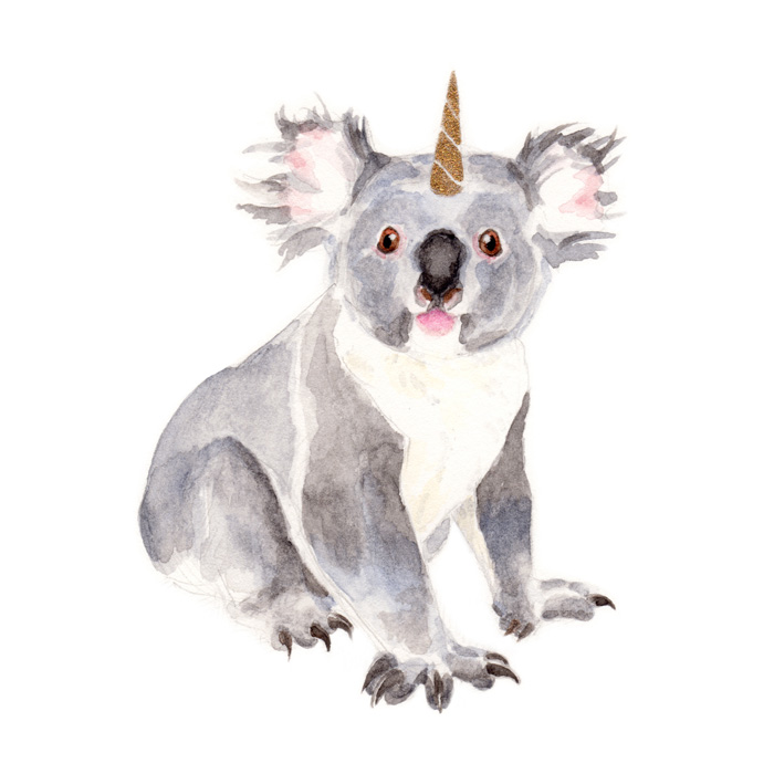 KoalaKorn | Watercolor by Darcy Goedecke