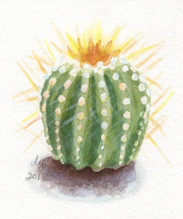 Cacti2Web