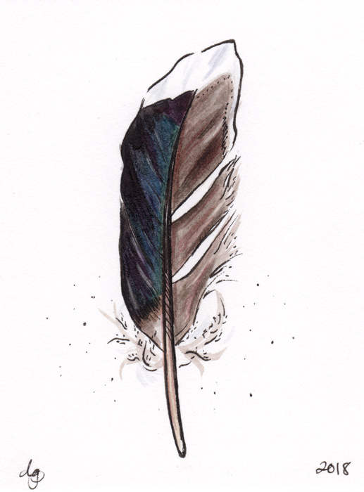FeatherMallardWeb