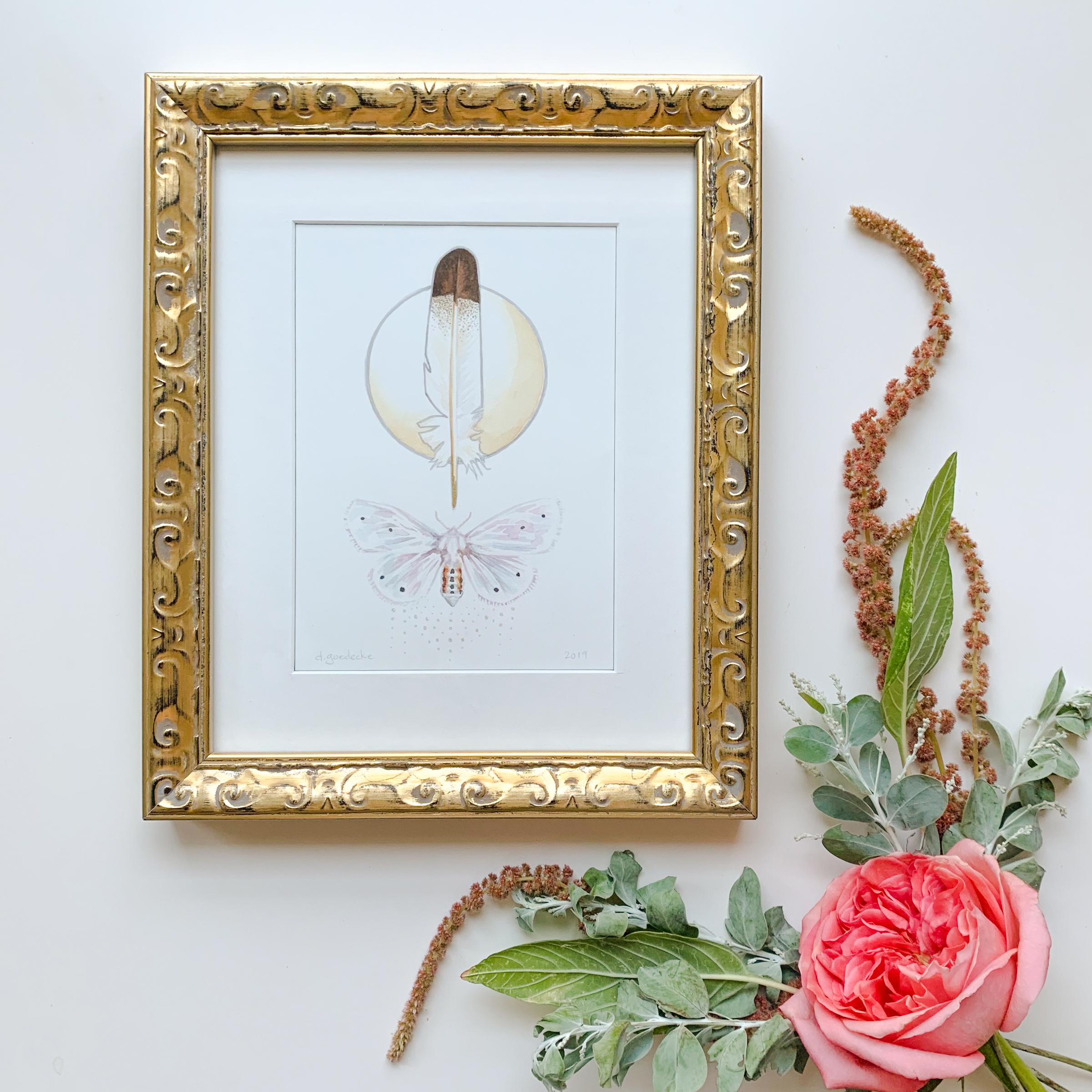 Light Moth Watercolor by Darcy Goedecke