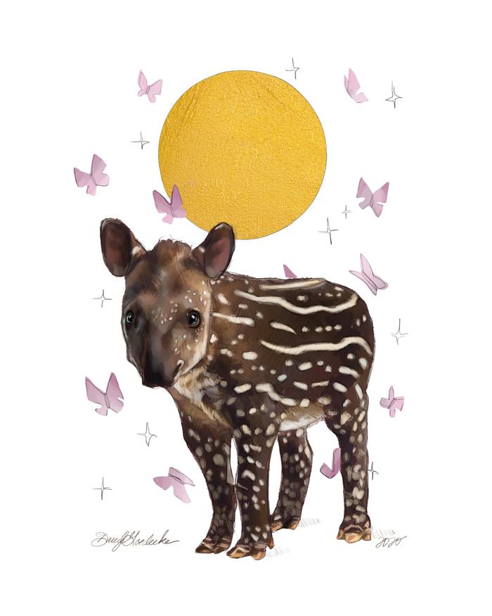 Baby Tapir by Darcy Goedecke