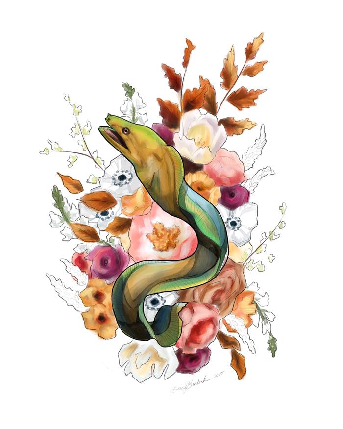 Moray Eel by Darcy Goedecke