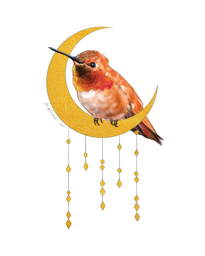 Moon Hummingbird by Darcy Goedecke