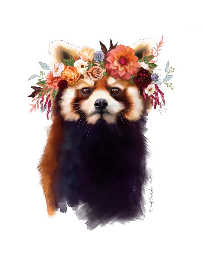 Red Panda by Darcy Goedecke