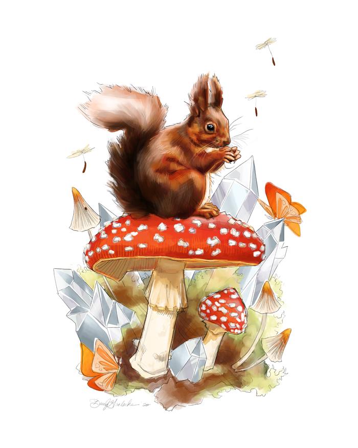 Woodland Squirrel by Darcy Goedecke