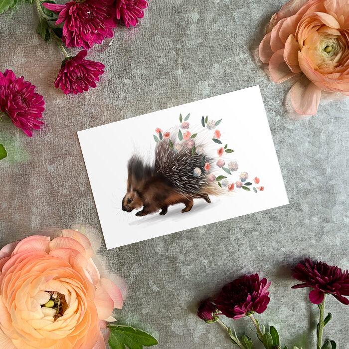 Porcupine Magnet by Darcy Goedecke